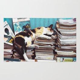 Cool Sleeping Cat on Books Rug