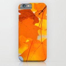 Yellow-orange Autumn iPhone 6s Slim Case