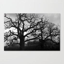Eerie winter trees Canvas Print