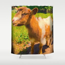 Nigerian Dwarf Goat Shower Curtain