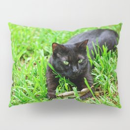 Green Eyes Pillow Sham