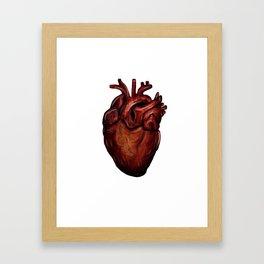Human Heart Framed Art Print