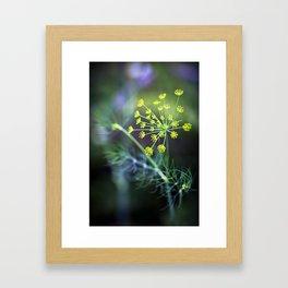 Dill Framed Art Print