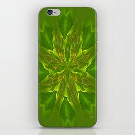Color Meditation - Green iPhone Skin