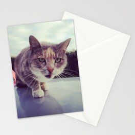 Unbridled cat Stationery Cards