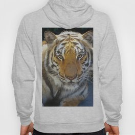 Tiger Face Hoody