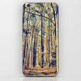 The Long Path iPhone Skin