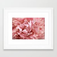 peony Framed Art Prints featuring Peony by Cindi Ressler Photography