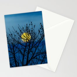 Night Birds Stationery Cards