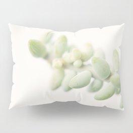 composure Pillow Sham