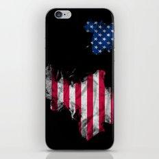 USA 2 iPhone & iPod Skin