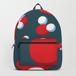 H2O Backpack