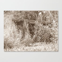 Cart Canvas Print