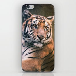 Tiger No 6 iPhone Skin