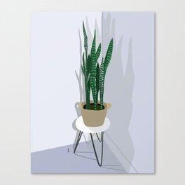 Snake Plant in Basket Canvas Print