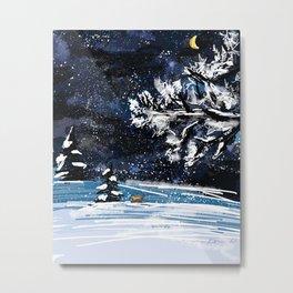Frosty Night Metal Print