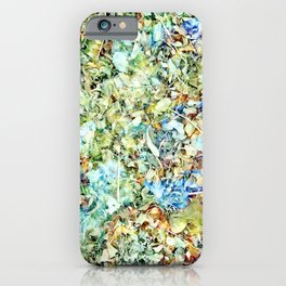 Lula Cloud iPhone Case