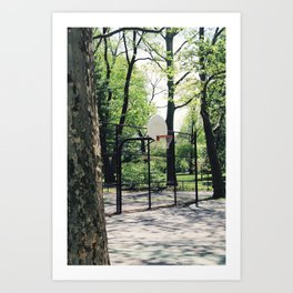 New York - Central Park Art Print
