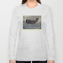 Vintage Sperm Whale Painting (1909) Long Sleeve T-shirt