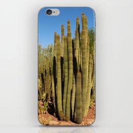 Organpipe Cactus iPhone Skin