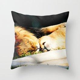Cat Nap (Jungle Love) Throw Pillow