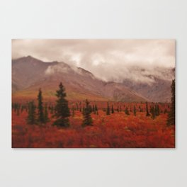 Smoky Mountains in the Fall Canvas Print
