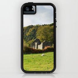 Field of Sheep Ireland iPhone Case