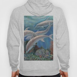 Happy Family - Dolphins Are Awesome Hoody