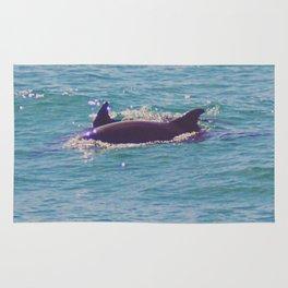 Dolphin Dorsals Rug