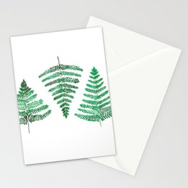 Fiordland Forest Ferns Stationery Cards