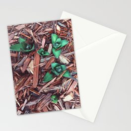 Flowers in the cold spring Stationery Cards
