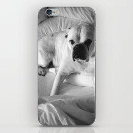 The Good Dog iPhone Skin