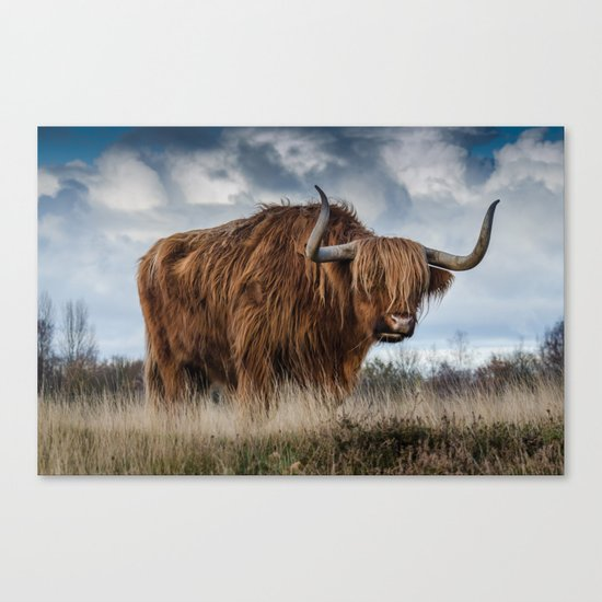 Highlander 1 Canvas Print