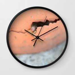 Knock Knock 2 Wall Clock