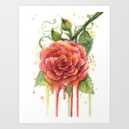 Red Rose Dripping Watercolor Flower Art Print