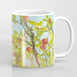 Pink Camellia japonica Blossoms and Sun in Blue Sky Coffee Mug