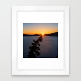 Sunset Tree Top Framed Art Print