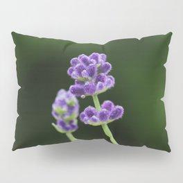 Lavender Pillow Sham