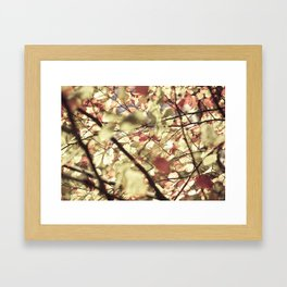 Gold Tree Leaves 02 Framed Art Print
