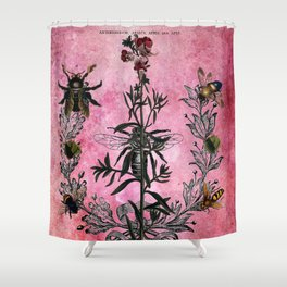 Vintage Bees with Toadflax Botanical illustration collage Shower Curtain