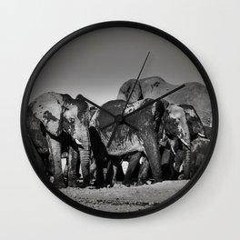 Elephant Herd Circling Wall Clock