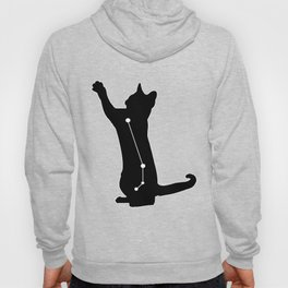 aries cat Hoody