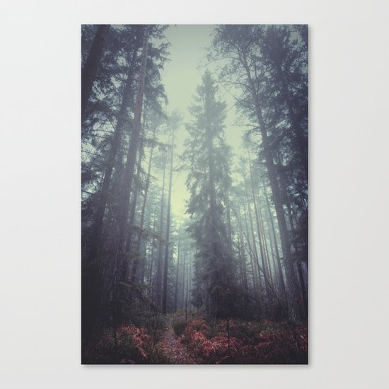 The magic trails Canvas Print