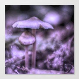 Magic Mushrooms Canvas Print