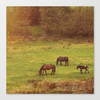 horses Canvas Prints featuring Horses by SensualPatterns