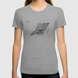 Geometry of a Charonia tritonis T-shirt