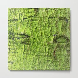 Mossy Green Abstract Metal Print