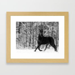 Friesian Mare in Snow Framed Art Print