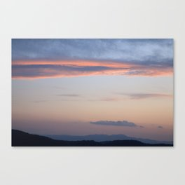 Natures roof Canvas Print