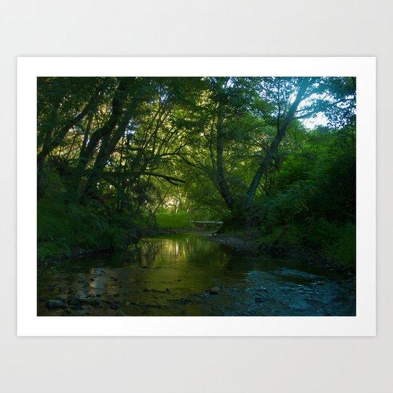 redwood creek Art Print